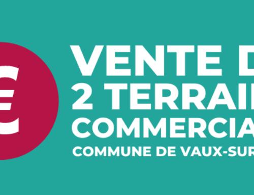 Vente de 2 terrains commerciaux Vaux-sur-Sûre